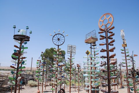 Le Bottle Tree Ranch